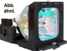 Leuchtmittel/Ersatzlampe für Sanyo PLC-XT25
